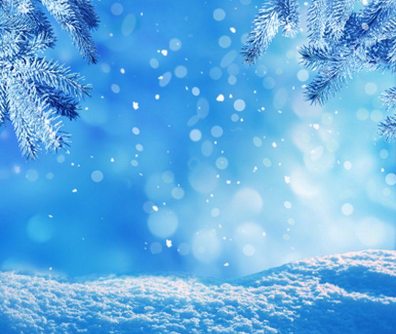 Winter's Effects on Flooring